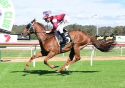 8yo Bon Rocket wins at Ipswich